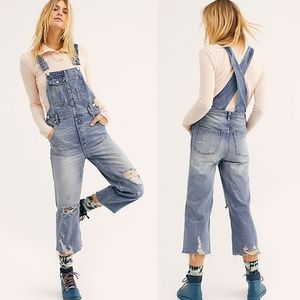 NWT Free People Boggy Boyfriend Overalls
